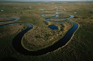 非洲溼地的迷人野生風情