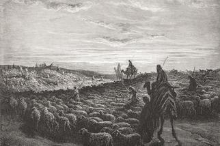 駱駝骸骨證實《聖經》錯了