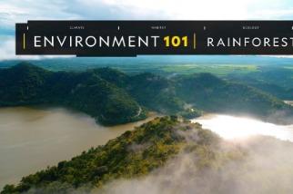 101科學教室:雨林