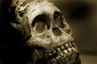 老祖先的飲食改變,可能影響了我們說話的方式