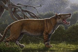 體型比北極熊還大!科學家發表新種古代肉食巨獸
