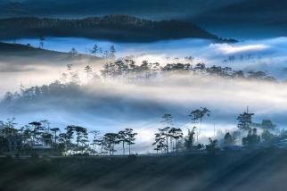 隆慶山的晨霧
