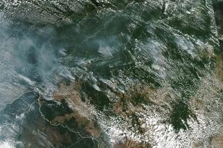 亞馬遜正以破紀錄的速度猛烈燃燒 ── 雨林砍伐是罪魁禍首