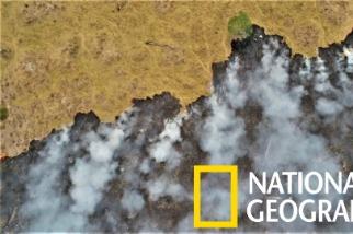 亞馬遜雨林正以前所未見的規模猛烈燃燒