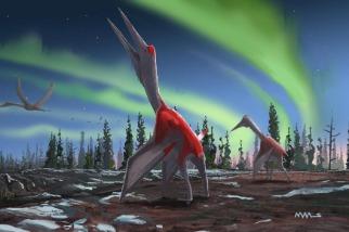 新種「冰龍」就藏在眾目睽睽之下