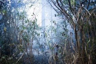見證大火中的滅絕 大型農企開發摧殘亞馬遜雨林 有如殖民故事翻版