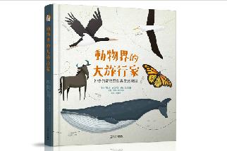 動物界的大旅行家★神奇的動物遷徙與生態地圖