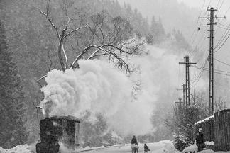 布柯維納的下雪天