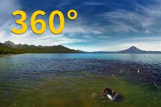 360° VR:俄羅斯堪察加半島的棕熊捕魚樂園