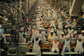 水果罐頭廠