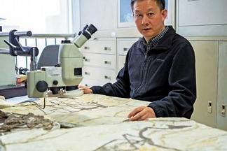 古生物研究 徐星