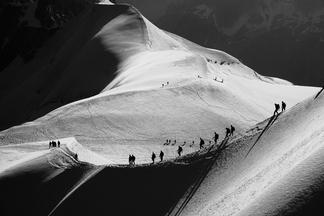 2015 國家地理攝影大賽-台灣賽區得獎作品賞析- 自然組