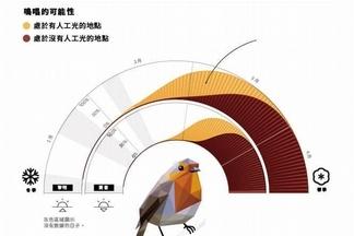 鳥兒為何提早鳴唱?