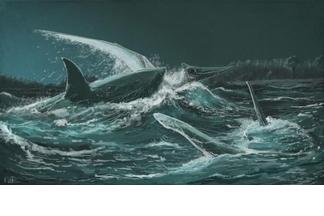 這不是電影畫面!史前鯊魚曾大啖翼龍