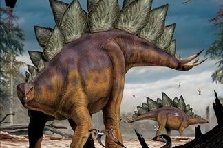 【恐龍狩獵者】劍龍(Stegosaurus)