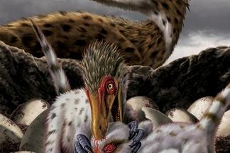【恐龍狩獵者】迅猛龍(Velociraptor)