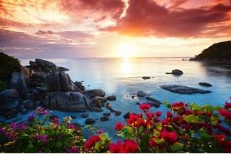 海島樂園 享樂漫遊