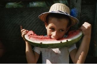 吃西瓜的五個理由