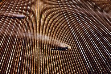 小農消失的未來 研究:全球1%農場掌握70%的農田、牧場
