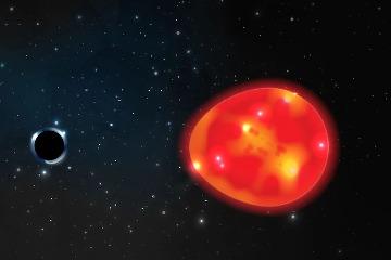 發現距離地球最近黑洞!
