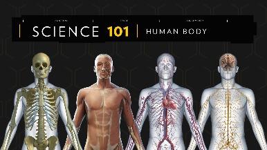 101科學教室:人體解密