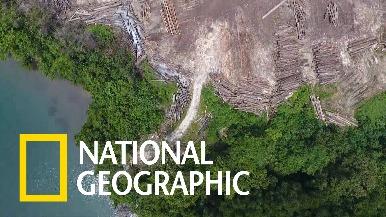 美國部分住宅建案可能加速巴紐熱帶雨林的毀滅