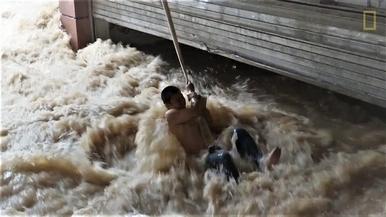 巨龍的逆襲:長江泛濫成災