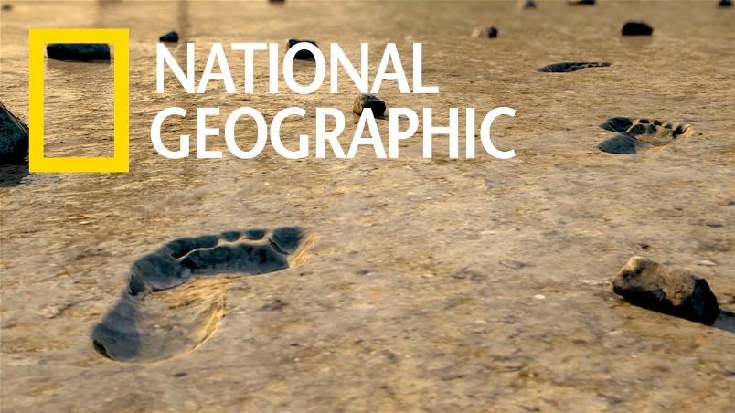 保存於火山泥流中的遠古人類足跡