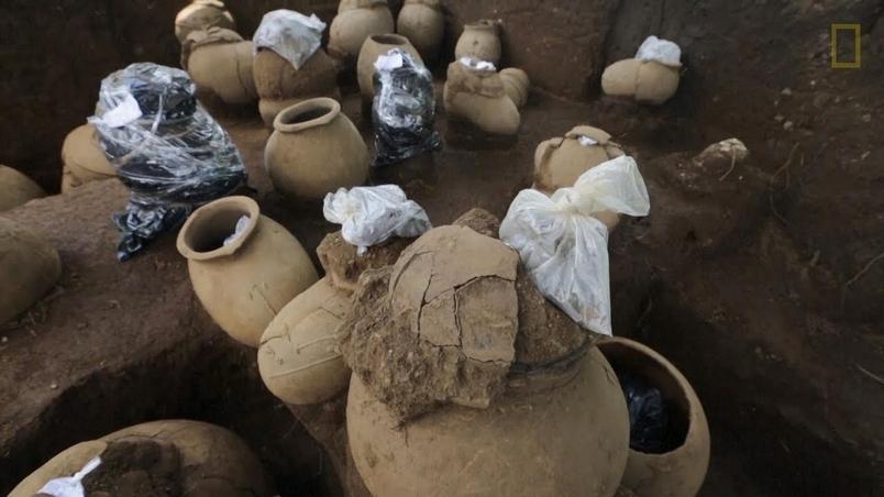 棒球場工地挖掘出超過30個裝有人類遺骸的甕