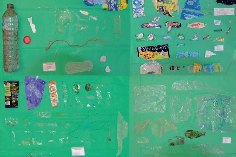 研究:飲食用外帶塑膠容器 占近一半海洋垃圾