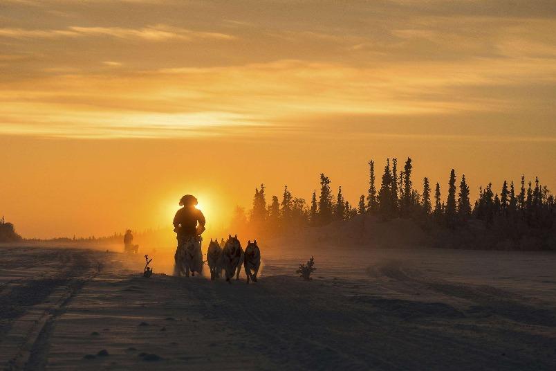 落日下的雪橇
