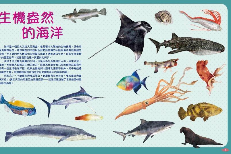 《世界上有哪些魚? 》 魚類、海洋動物與牠們生活的大海